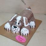 Торт-собачка без мастики