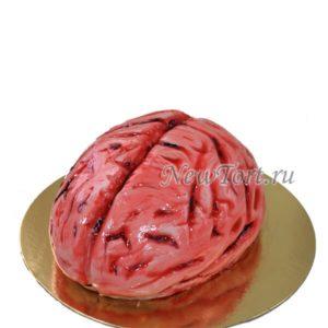 Торт-мозг