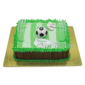 Торт СПТ35