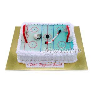 Торт хоккейное поле без мастики