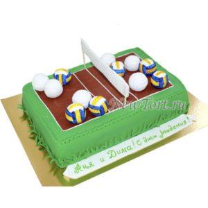 Торт  волейбольное поле с мячами