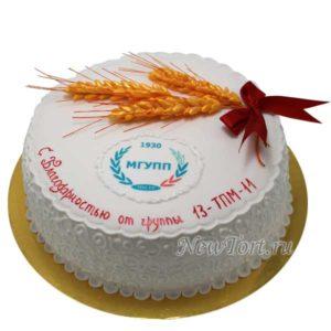 Корпоративный торт из мастики