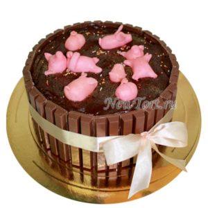 Торт свинки в шоколаде