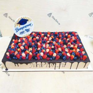 Ягодный торт для выпускника ТВ30